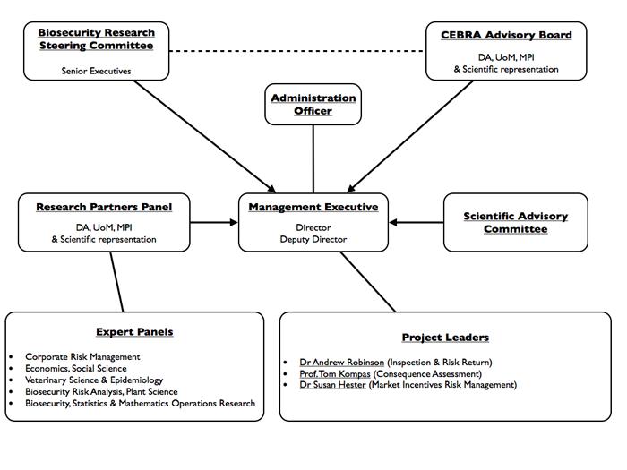 CEBRA Governance Structure